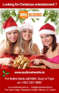 Audionetworks Christmas Entertainment Booking Agency Ireland
