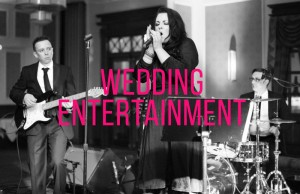 Best Wedding Entertainment with www.audionetworks.ie